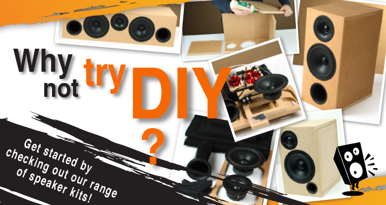 Why not try our DIY speaker kits